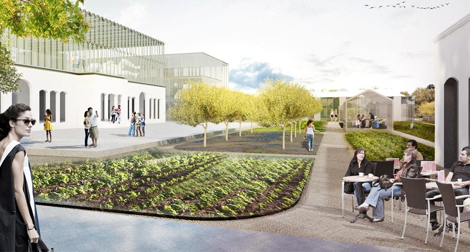 venice-university-island-gardens